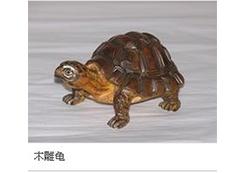 工艺龟木雕